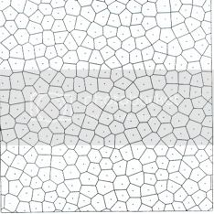 Picture of voronoi honeycomb